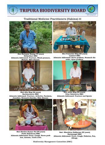 Traditional healers III