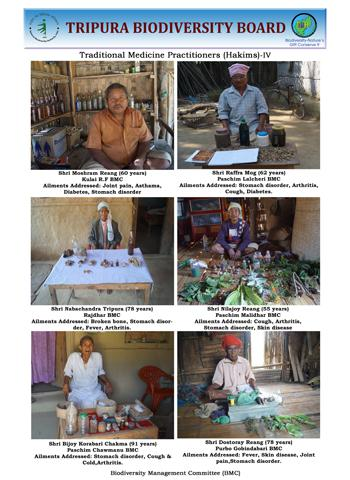 Traditional healers IV